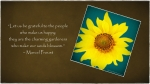 Proust~Sunflower